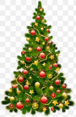Christmas Tree - Christmas Tree Christmas Ornament Clip Art PNG
