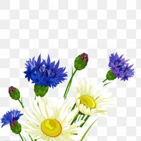 White Purple Flower Bouquet - Flower Bouquet PNG