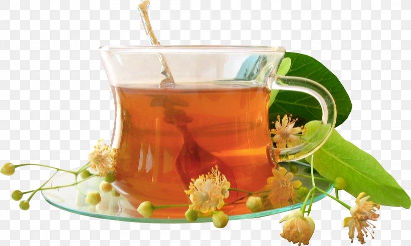 Herbal Tea Chrysanthemum Tea Tea Bag Herbalism, PNG, 2047x1229px, Tea, Chrysanthemum Tea, Cup, Drink, Essiac Download Free