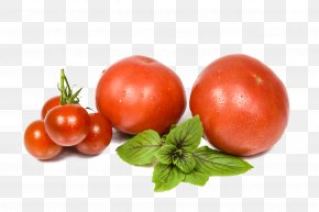 Vector Tomato - Vegetable Tomato Fruits Et Lxe9gumes Food PNG