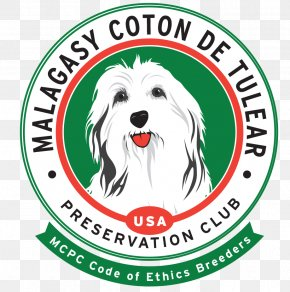 Puppies Coton Tulear - Coton De Tulear Dog Breed Toliara Logo PNG