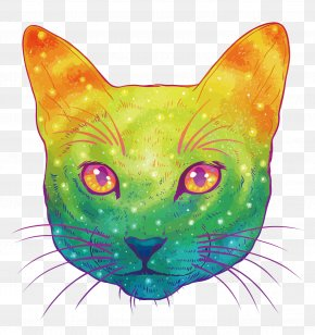 Vector Colorful Cat - Cat Kitten Felidae Drawing Illustration PNG