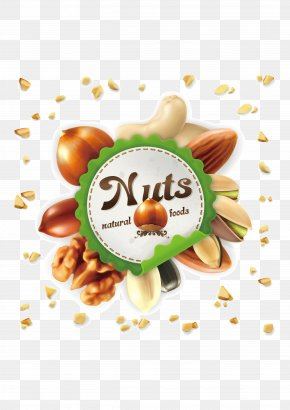 Creative Nuts - Nucule Mixed Nuts Euclidean Vector Stock Photography PNG