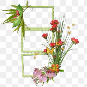 Adr Frame - Vector Graphics Clip Art Design Image PNG