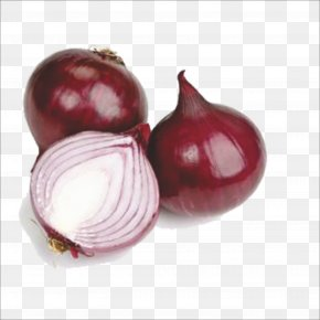 Fresh Onion - Red Onion Shallot Beetroot Still Life Photography PNG