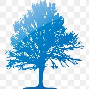 Tree - Twig Tree Icon Design Clip Art PNG