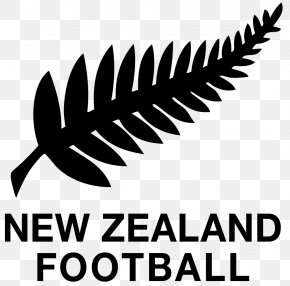 New Zealand - New Zealand National Football Team Oceania Football Confederation New Zealand Women's National Football Team New Zealand Football Championship PNG