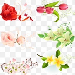 Plant Flowers And Floral Material Celebration - Flower Download Clip Art PNG