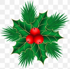 Mistletoe - Mistletoe Christmas Decoration Clip Art PNG