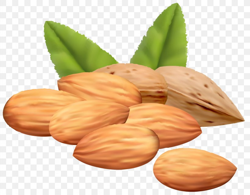 Almond Royalty-free Stock Photography Clip Art, PNG, 6343x4955px, Almond, Almond Butter, Almond Paste, Commodity, Drawing Download Free