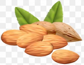 Almond Nuts Clipart Image - Almond Royalty-free Stock Photography Clip Art PNG