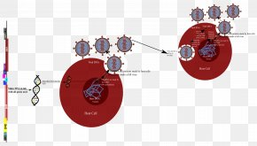 Hiv Virus Clipart - Product Design Diagram Graphics Technology PNG