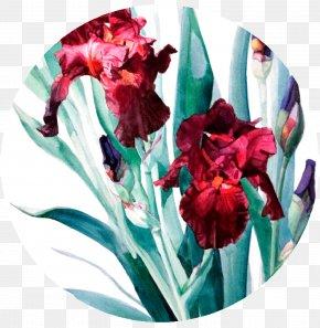 Circular Artwork - Donatello Watercolor Painting Art Floral Design PNG