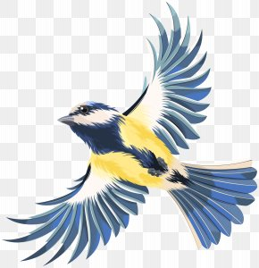Flying Bird Transparent Clip Art Image - Bird Flight Bird Flight Clip Art PNG
