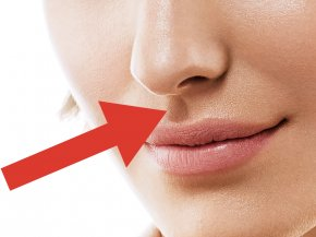Nose - Nose Lip Mouth Face Philtrum PNG