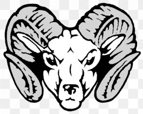 Ram Head Cliparts - Ram Trucks Sheep Dodge Clip Art PNG