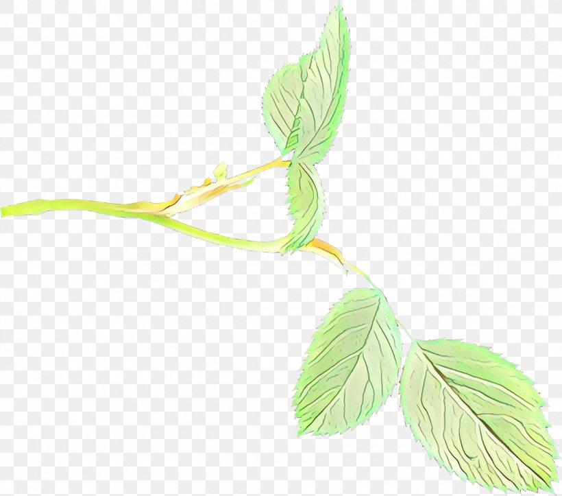 Leaf Plant Flower Tree Twig, PNG, 1160x1024px, Cartoon, Branch, Flower, Flowering Plant, Leaf Download Free