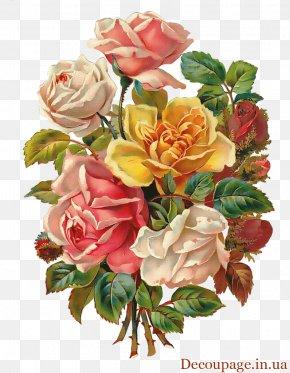 Flower Vintage - Flower Bouquet Rose Floral Design Clip Art PNG