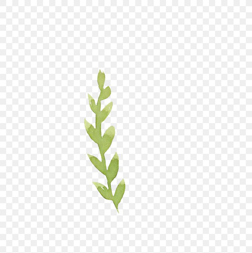 Green Leaf Drawing, PNG, 514x822px, Green, Blue, Branch, Color, Drawing Download Free