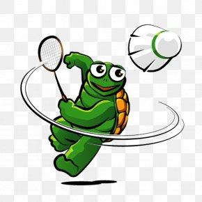 Frog - Tree Frog Draveil Badminton Cartoon Clip Art PNG