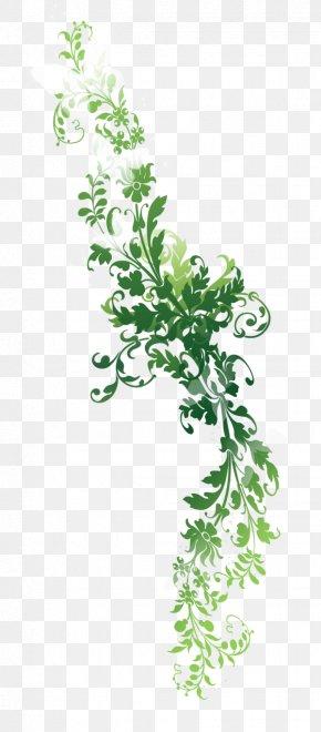 Nature Images - Twig Text Leaf Plant Stem Illustration PNG