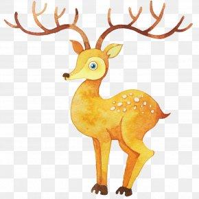 Watercolor Deer - Watercolor Painting Illustration PNG
