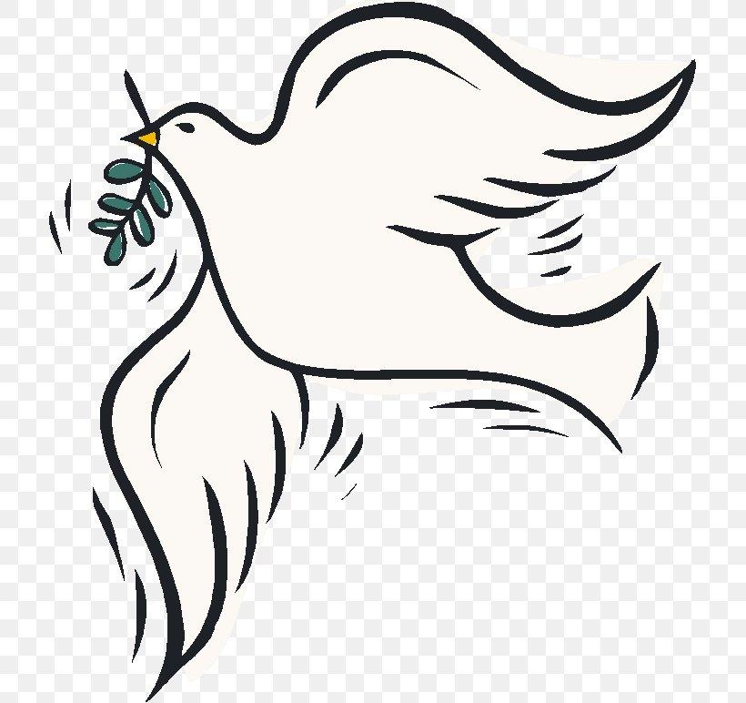 Columbidae Colombe Peace Clip Art Png 713x772px Columbidae Art Artwork Beak Bird Download Free