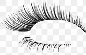 Thick Eyelashes Thin Holiday - Eyelash Extensions Cosmetics Clip Art PNG