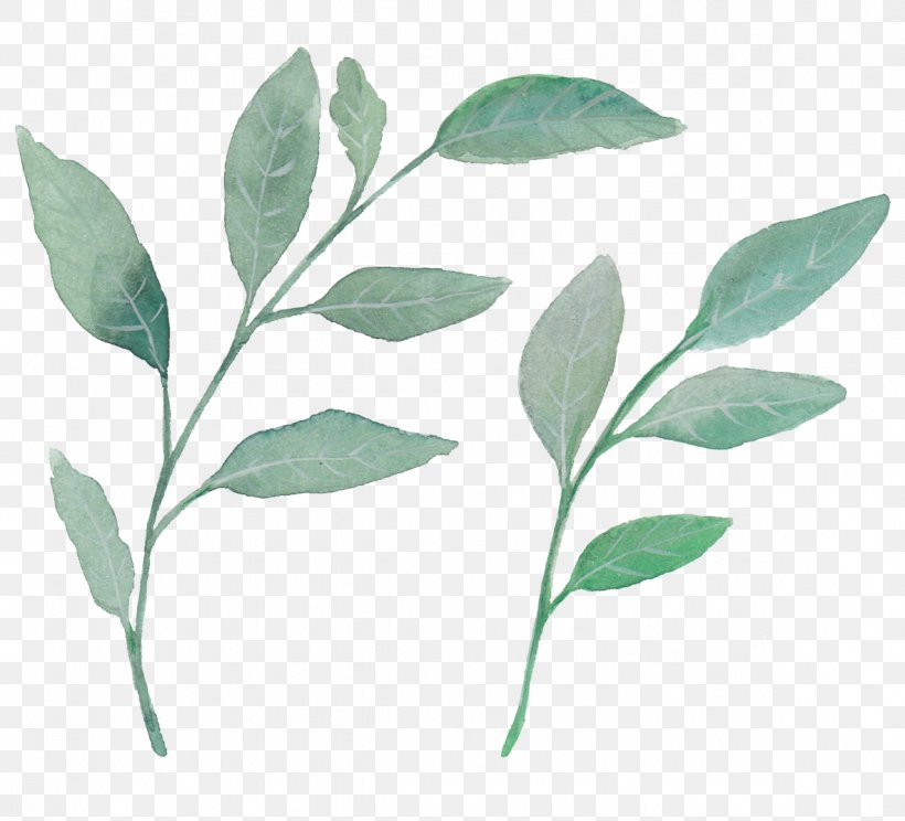 Leaf Watercolor Painting Plant, PNG, 1183x1074px, Leaf, Branch, Green, Plant, Plant Stem Download Free