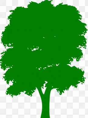 Green Tree Cliparts - Tree Green Clip Art PNG