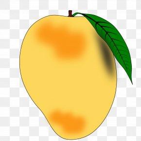 Big Log Cliparts - Mango Devanagari Fruit Hindi Clip Art PNG