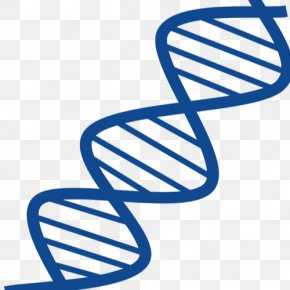 Blue Gene Chain - DNA Nucleic Acid Double Helix Gene RNA Nucleic Acid Structure PNG