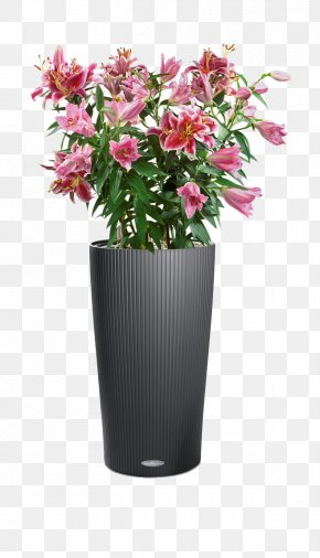 Vase - Flowerpot Cottage Little Owl Houseplant Cachepot PNG