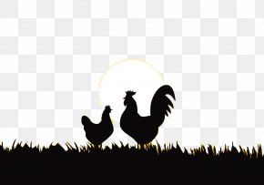 Sunrise - Rooster Chicken Silhouette PNG