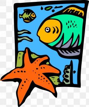 Starfish - Marines Marine Life United States Marine Corps Clip Art PNG