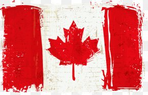 Vector Canadian Flag - Flag Of Canada Canada Day National Flag PNG