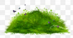 Grass Path Ground Clipart - Ground Computer File PNG