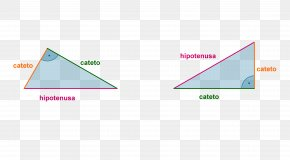 Triangle - Right Triangle Euclid's Elements Right Angle PNG