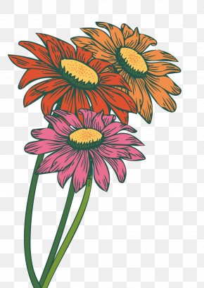 Vector Gerbera - Common Daisy Transvaal Daisy Common Sunflower Chrysanthemum PNG