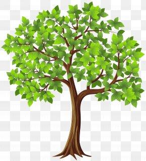 Tree Transparent Clip Art Image - Tree Clip Art PNG