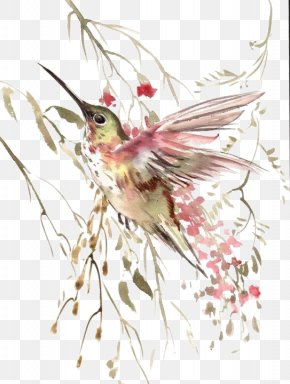 Watercolor Painted Birds Flying - Hummingbird Flight Watercolor Painting PNG