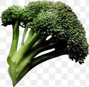 Sprouting Broccoli Cauliflower Health Food PNG