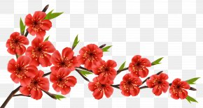 Red Spring Branch Clipart Image - Flowery Branch Clip Art PNG