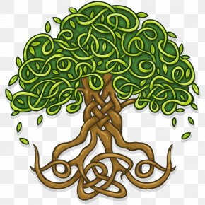 Life - T-shirt Tree Of Life Wall Decal Celtic Sacred Trees PNG