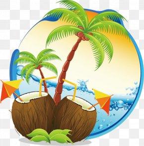 Tourism Cartoon Wallpaper - Coconut Water Coconut Milk Clip Art Vector Graphics PNG