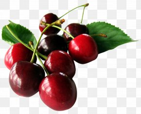 Cherry With Leaf - Cherry Fruit PNG
