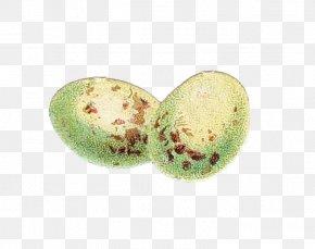 Egg Easter Egg - Easter Egg PNG