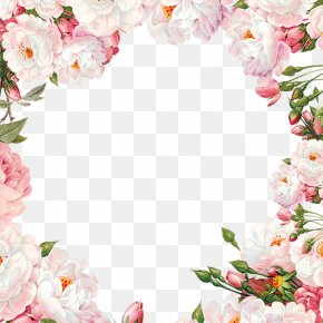 Hand Painted Flower Frame Material PNG