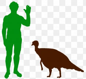 Dinosaur - Dinosaur Staurikosaurus Metric Ton Hippopotamus Ton Of TNT PNG