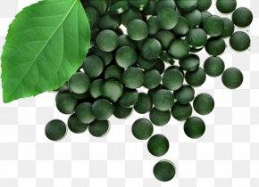Tablet - Dietary Supplement Spirulina Arthrospira Platensis Algae Tablet PNG